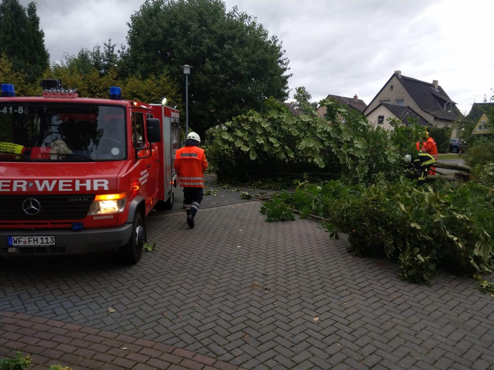 Alarm H2 Gitterweg in Haverlah